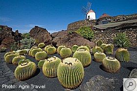 Jardin de Cactus Agni Travel