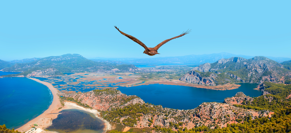 Dalyan Turkey: Definitive Travel Guide for 2019