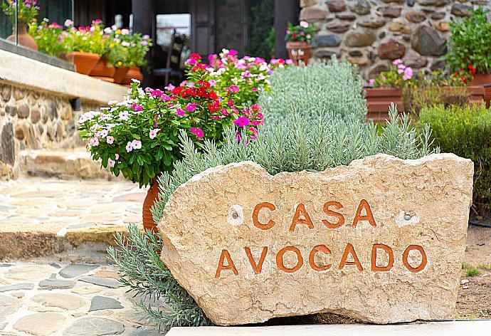 Casa Avocado